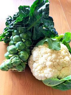野菜の写真・画像素材[534182]
