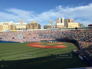 スポーツ,野球,野球観戦