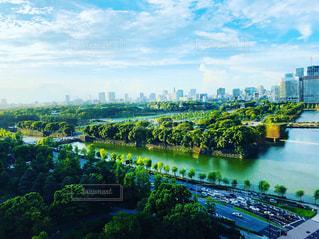 風景,公園,雲,青空,爽やか,秋空,9月,東京の空,緑と青