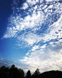 風景,秋,雲,青空,木々,秋空