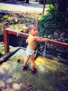 水浴びの写真・画像素材[1356635]