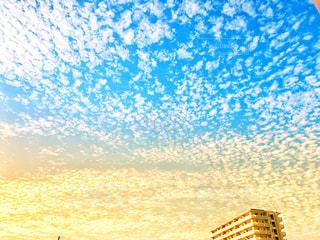 空,秋,ビル,屋外,雲,うろこ雲,秋空