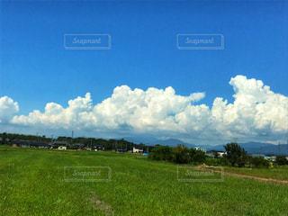 いい天気の写真・画像素材[2430955]