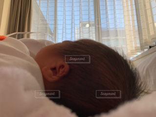誕生の写真・画像素材[2981590]