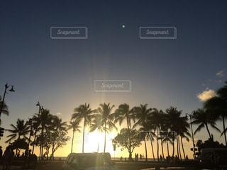 夕日,鮮やか,ヤシの木,ハワイ,サンセット,ワイキキビーチ,綺麗な景色