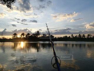 夕日,釣り,ヤシの木,サンセット,バンコク,タイランド,綺麗な景色,夕まづめ