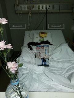 ひまわり,病院,入院,医療,お見舞い,病院のベッド,身代わり