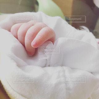 赤ちゃんの手の写真・画像素材[1875725]