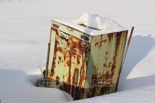 雪の写真・画像素材[553095]