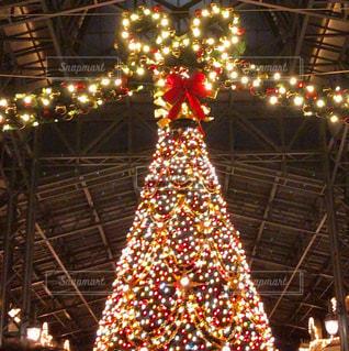 冬,クリスマス,ツリー