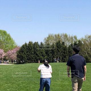 公園,桜,後ろ姿,人物,背中,人