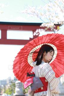 桜,着物,日本,japan,日本の風景