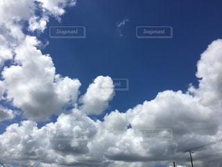 自然の写真・画像素材[239745]