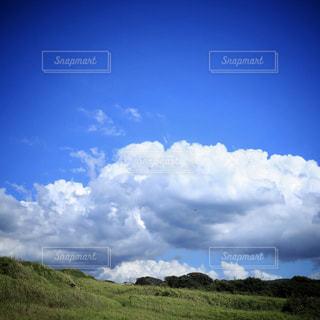 自然の写真・画像素材[239755]