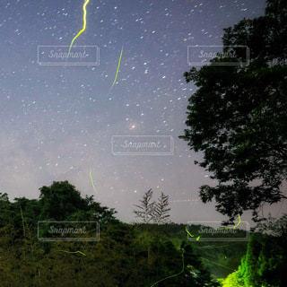 夜空にホタルの写真・画像素材[3610208]
