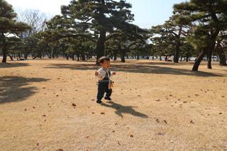 砂の中に立っている小さな男の子の写真・画像素材[1016387]