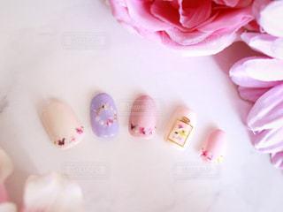 近くにピンクの花のアップの写真・画像素材[1155469]
