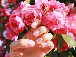 花を持っている手の写真・画像素材[1182173]