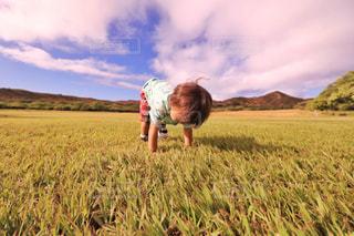 緑の野原で男の写真・画像素材[1233772]