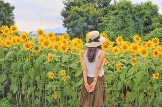 黄色の花の前に立っている人の写真・画像素材[1330273]