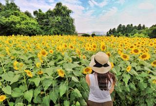 黄色の花の前に立っている人の写真・画像素材[1330275]