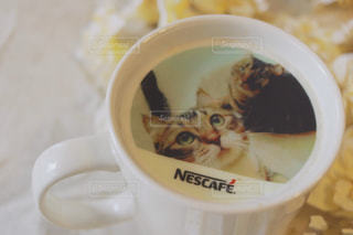 コーヒー カップの横に座っている猫の写真・画像素材[1454001]