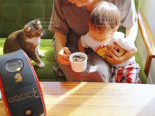 猫とテーブルに座って人の写真・画像素材[1460768]