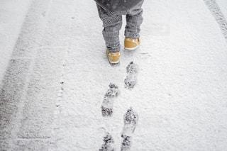 冬の写真・画像素材[1800135]