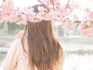 花を持っている人の写真・画像素材[1827348]