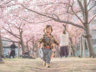 未舗装の道路を歩く少女の写真・画像素材[1832045]