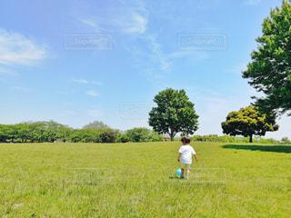 緑の野原にいる人の写真・画像素材[2171956]