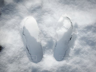 雪の上の足跡の写真・画像素材[1772860]
