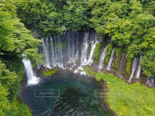 森の中の大きな滝の写真・画像素材[768474]