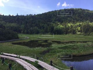 緑豊かな緑のフィールドと川の写真・画像素材[765925]