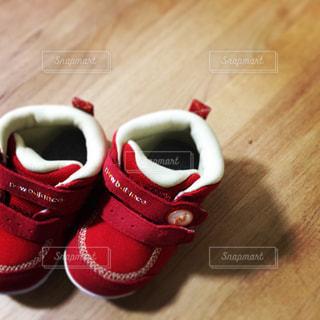 靴の写真・画像素材[529639]