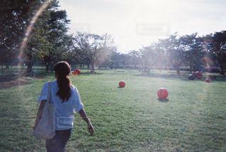 フィールドでフリスビーを再生する人々 のグループの写真・画像素材[718624]