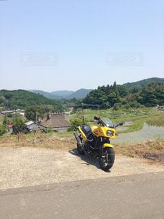 黄色 - No.608547