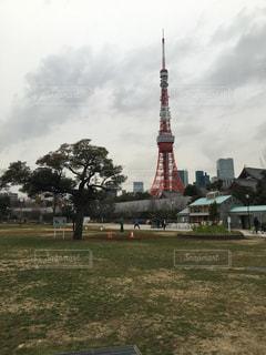東京タワーの写真・画像素材[565300]