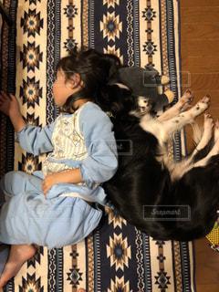 犬,子供,仲良し,枕,ボーダーコリー,犬と私