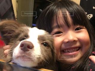 犬,仲良し,ボーダーコリー,イザベラ,犬と私