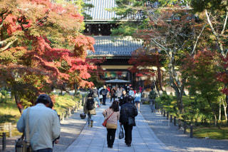 京都、南禅寺の写真・画像素材[908173]
