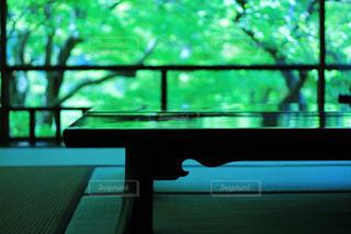 京都,観光,新緑,リフレクション,青紅葉,瑠璃光院