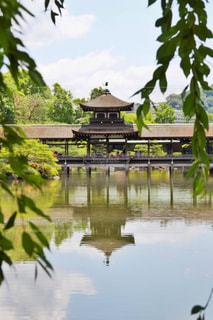 平安神宮の庭園にて - No.1227521