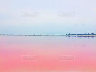 ピンク,観光,ピンク色,メキシコ,pink,ピンクレイク