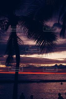 空,太陽,ビーチ,夕暮れ,海岸,光,ヤシの木,ハワイ,夕陽,ワイキキ