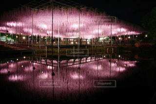 夜ライトアップ橋の写真・画像素材[1147141]