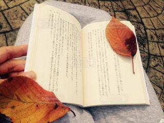 秋,屋外,本,読書,枯葉