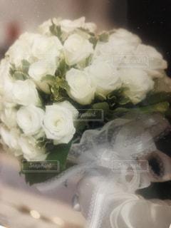 近くの花のアップ - No.911669