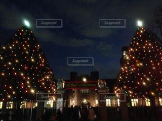 夜景,庭,イルミネーション,ライトアップ,クリスマス,クリスマスツリー