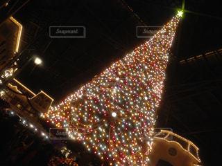 イルミネーション,クリスマス,クリスマスツリー,フォトジェニック,インスタ映え